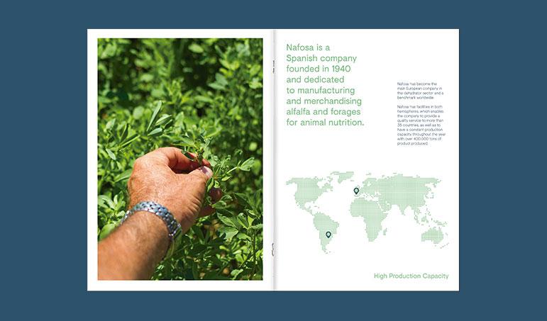 Nafosa diseño campana comunicación internalización de productos agroalimentarios alfalfa forraje y derivados catálogos y web en idiomas, video corporativo, diseño de estands para ferias internacionales en china y oriente medio.