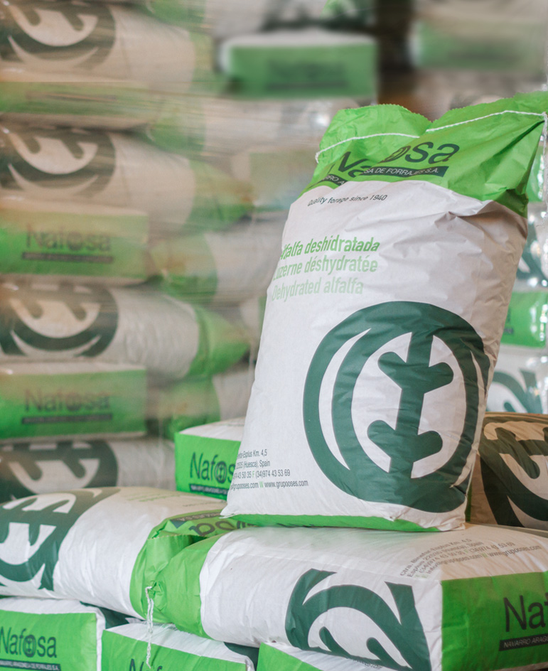 Diseño de packaging, diseño de sacos y sacas y big bags big-bags para productos industriales, gran experiencia en su fabricación y artes finales. Pamplona Navarra Aragón País Vasco pac´s.