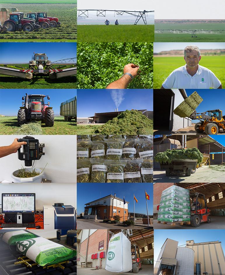 Fotografía publicitaria, fotos de productos, foto profesional para empresas industriales, asesoría, foto periodismo, foto aérea, foto industrial procesos de producción, en navarra, pamplona, profesionales de la fotografía para empresas.