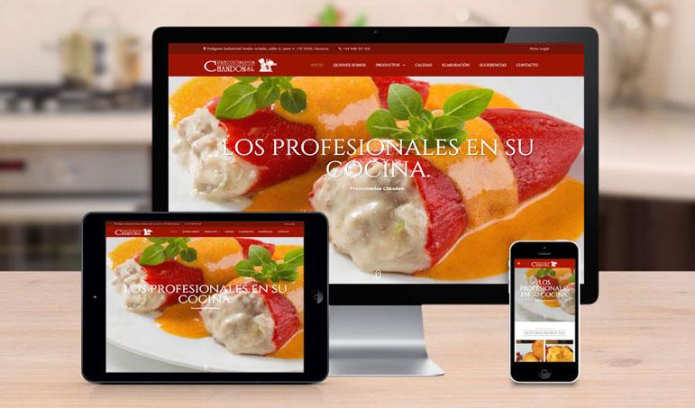 011_CHANDON-diseño-de-pagina-web-en-navarra-pamplona