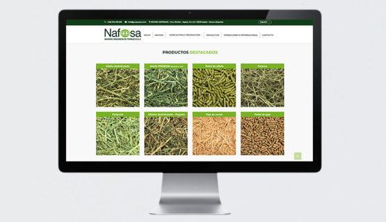 Diseño páginas web, catalogó web de venta online, trabajamos seo y sem a nivel internacional, expertos en comunicación online para empresas con proyección internacional, en Navarra Pamplona.