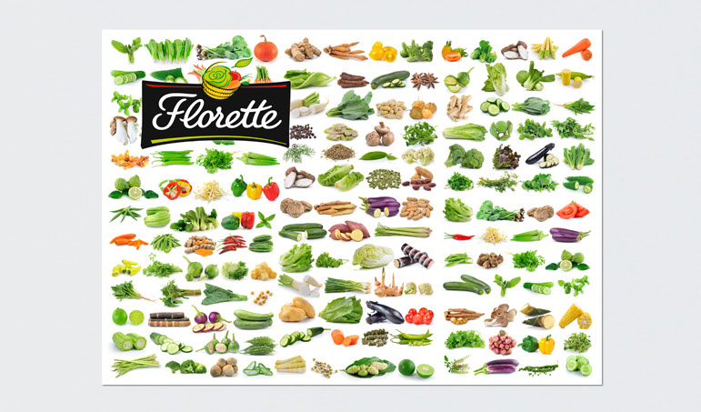 014_florette_packaging_ilusttracion_diseño_grafico_dibujo_manteleria_manteles_publicidad_navarra_pamplona