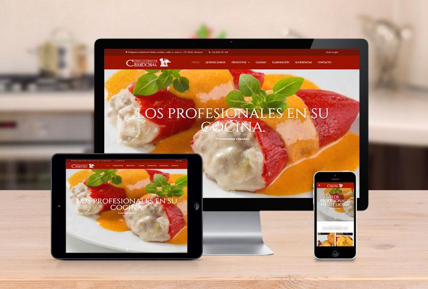 empresa-diseño-paginas-web-webs-navarra-pamplona-personalizadas-alimentacion-precocinados-posicionamiento-seo-sem