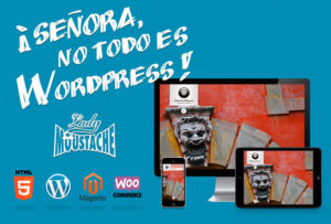 diseño-y-desarrollo-paginas-web-wordpress-tiendas-online-html5-seo-sem-navarra-pamplona