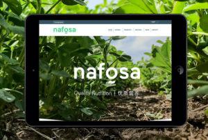 Diseño y desarrollo de páginas wen en pamplona navarra comunicación y publicidad para empresas agroalimentarias